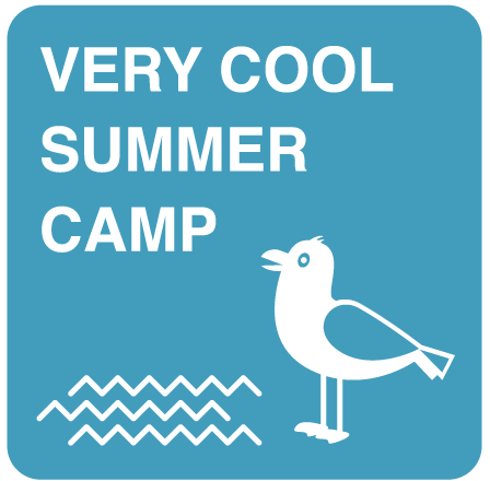 Very cool summer camp